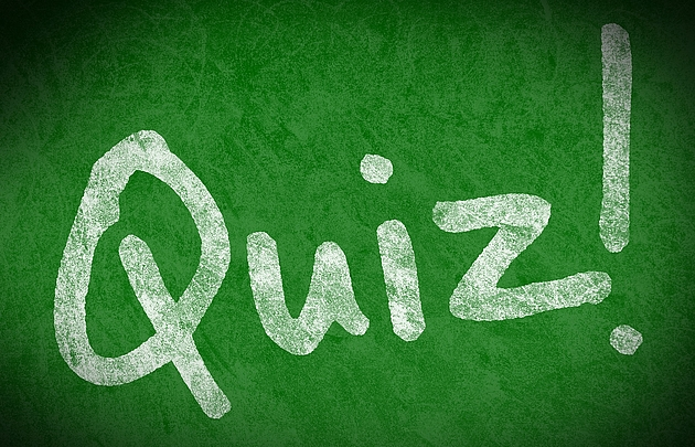 Schriftzug Quiz in weiß auf grünem Hintergrund